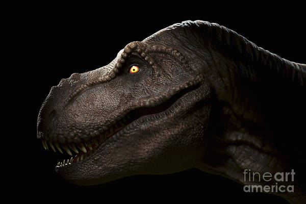 Photograph - Dinosaur Tyrannosaurus by Science Picture Co