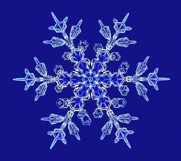Dendrite Wall Art - Photograph - Snowflake by Kenneth Libbrecht