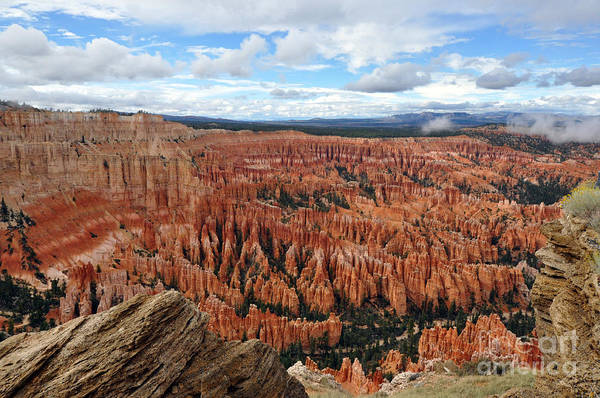Photograph - 416p Bryce Canyon by NightVisions