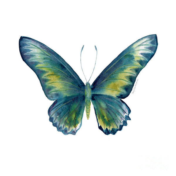 Painting - 42 Blue Rajah Birdwing Butterfly by Amy Kirkpatrick