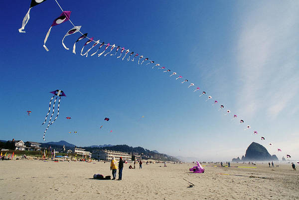 Kite Festival Wall Art - Photograph - United States by Greg Vaughn