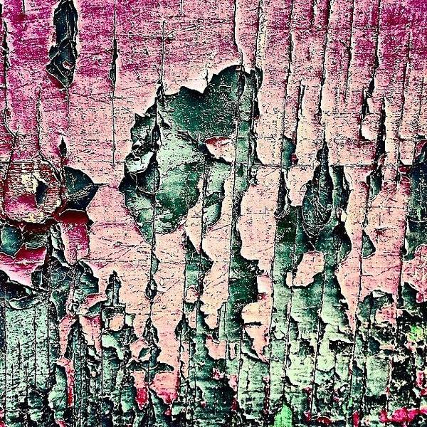 Wall Art - Photograph - Flaky Paint by Jason Michael Roust