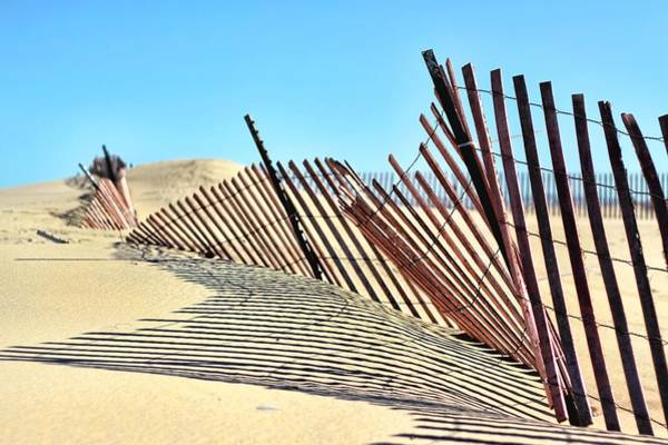 Holland Mi Wall Art - Photograph - 4935 Sand Fencing by Kathy Wesserling