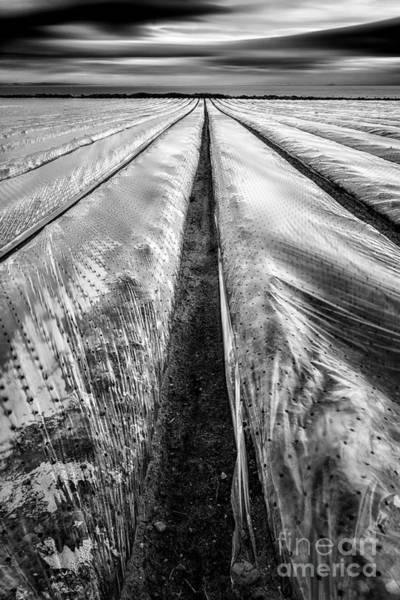 Ayrshire Photograph - 5-4-3 by John Farnan