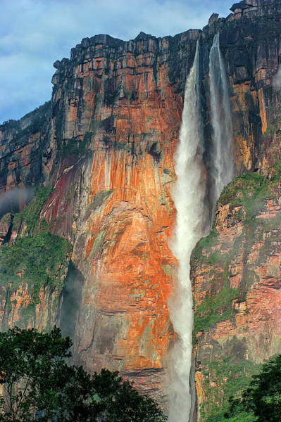 Wall Art - Photograph - Angel Falls Is The Highest Waterfall by David Santiago Garcia