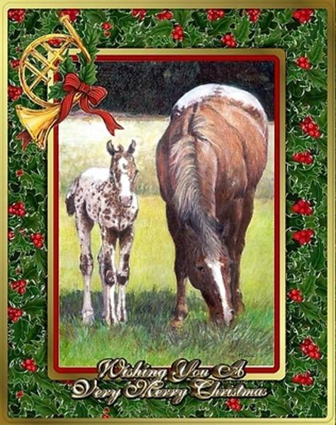 Appaloosa Drawing - Appaloosa Horse Blank Christmas Card by Olde Time  Mercantile