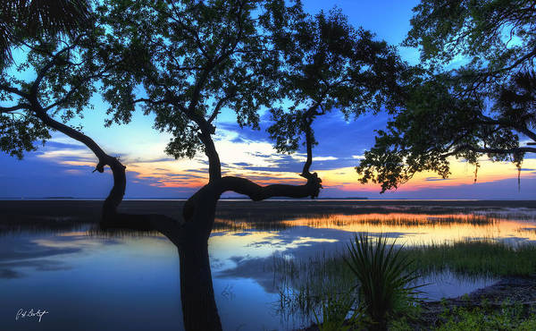 Lowcountry Digital Art - April Morning by Phill Doherty
