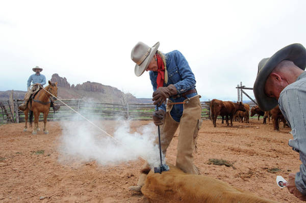 Branding Iron Photograph - Branding On A Ranch, Next by Ted Wood