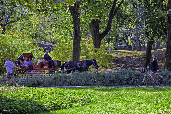 Wall Art - Photograph - Central Park Afternoon by Madeline Ellis