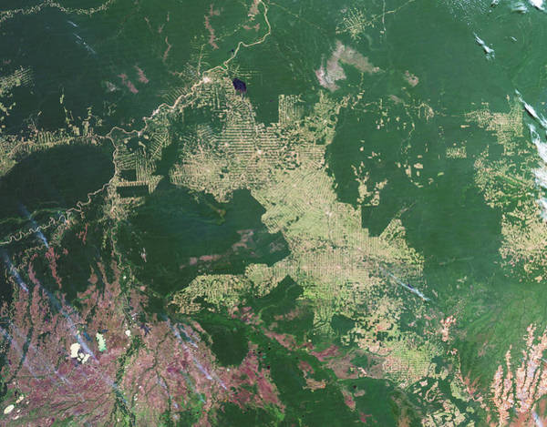 2010s Wall Art - Photograph - Deforestation In The Amazon by Nasa Earth Observatory