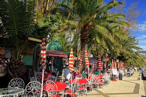 Outdoor Cafe Photograph - Europe, Portugal Madeira by Kymri Wilt