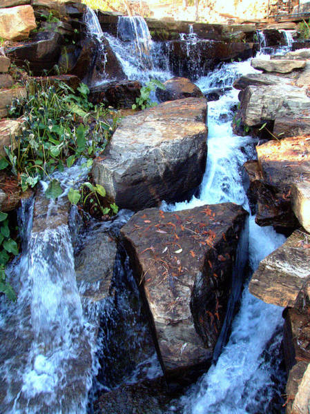 Photograph - Finlay Park Waterfall 3 by Lisa Wooten