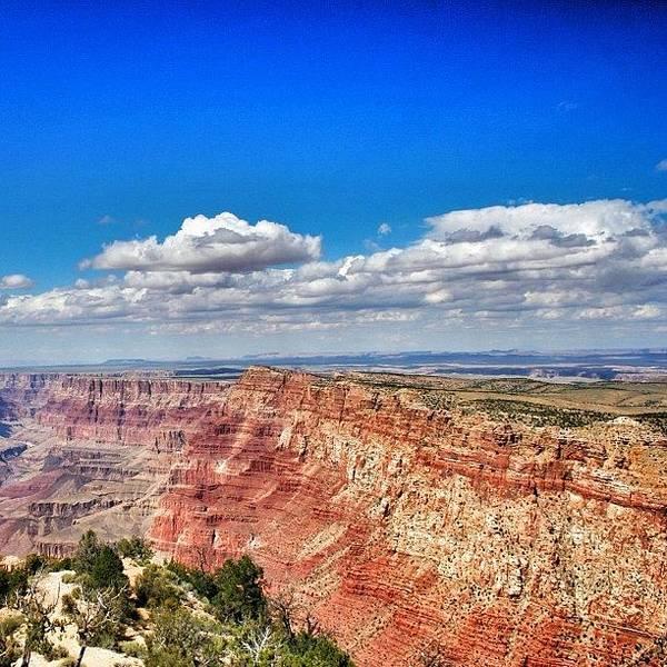 Wall Art - Photograph - Grand Canyon by Luisa Azzolini