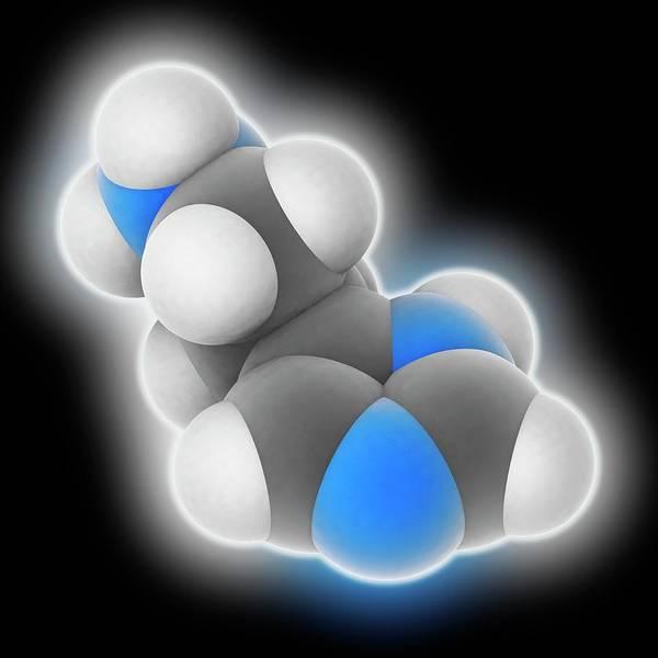 Neurotransmitter Wall Art - Photograph - Histamine Molecule by Laguna Design