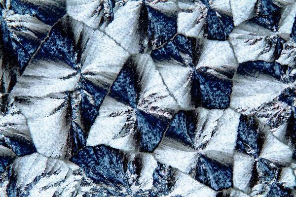 Wall Art - Photograph - Lactose Crystals by Antonio Romero