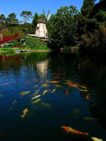 Photograph - Lake Shrine Temple by Jeff Lowe