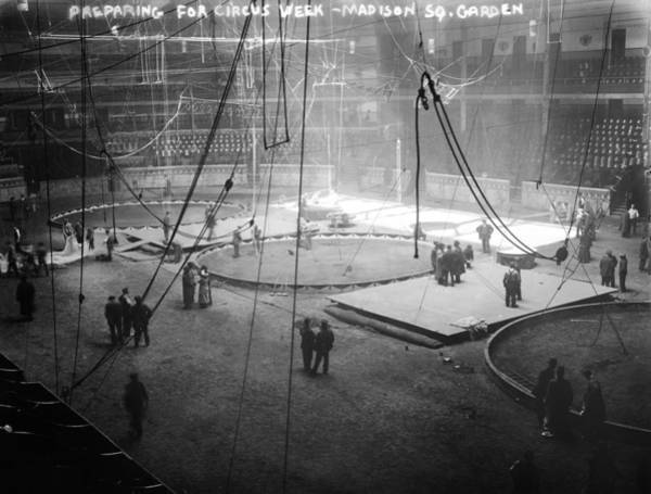 Trapeze Photograph - Madison Square Garden by Granger