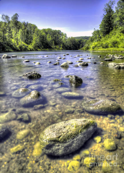 Wall Art - Photograph - Manistee River by Twenty Two North Photography