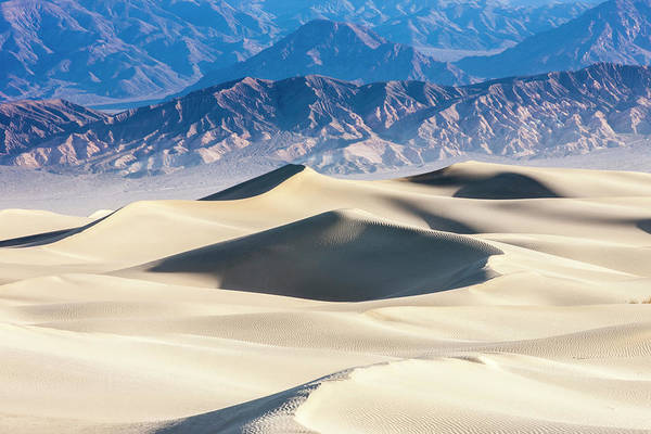 Death Valley Photograph - Mesquite Sand Dunes by Tom Norring