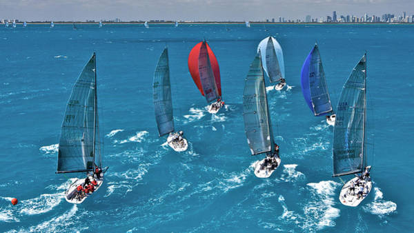 Photograph - Miami Spinnakers by Steven Lapkin