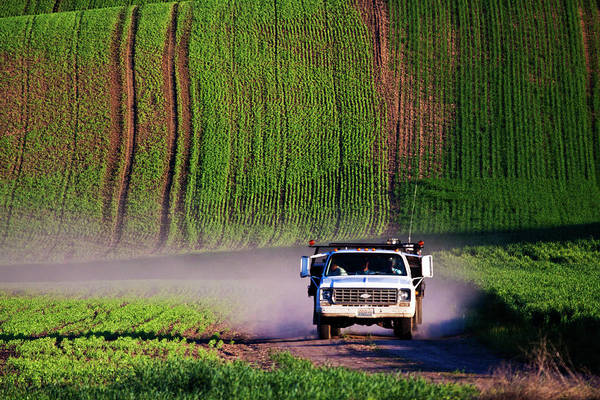 Back Road Photograph - North America, Usa, Washington, Spring by Terry Eggers