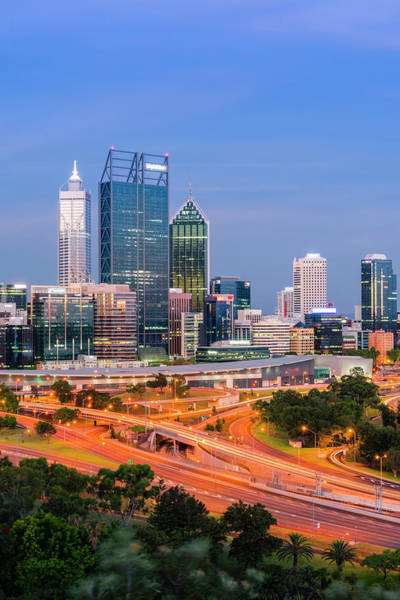 Convention Wall Art - Photograph - Perth City And Cbd From Kings Park by Stefan Mokrzecki