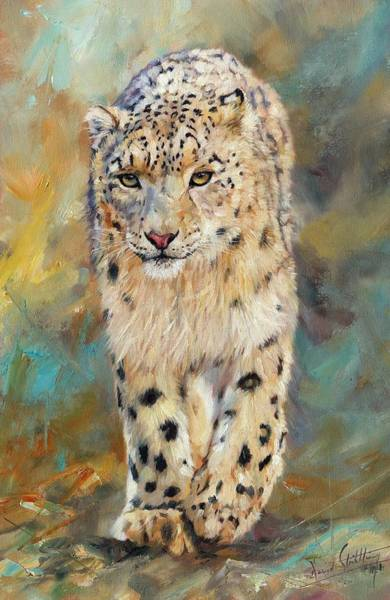 Big Cat Wall Art - Painting - Snow Leopard by David Stribbling