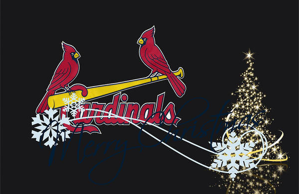 St. Louis Photograph - St Louis Cardinals by Joe Hamilton