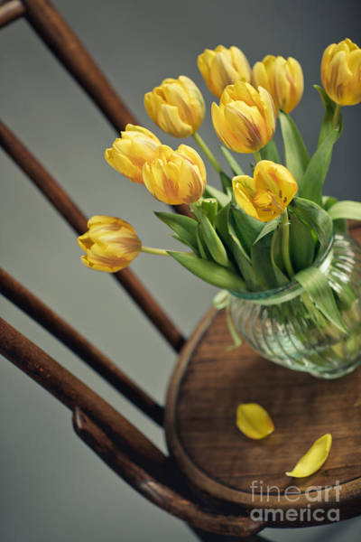 Vases Photograph - Still Life With Yellow Tulips by Nailia Schwarz