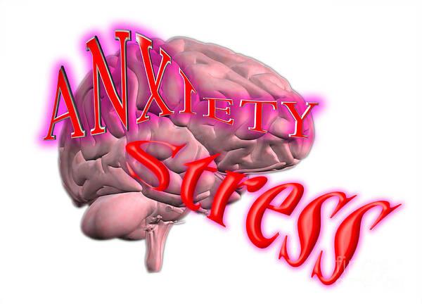 Anguish Photograph - Stress by Scott Camazine