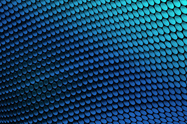 Photograph - Study Of Patterns And Colours by Roland Shainidze Photogaphy