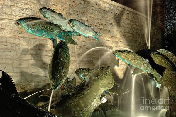 Photograph - The Fountain At Founders Hall by Mark Dodd