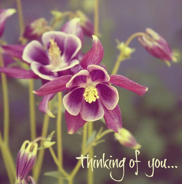 Wall Art - Digital Art - Thinking Of You... by Cathie Tyler