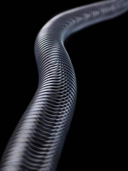 Demonstration Wall Art - Photograph - Transverse Wave by Science Photo Library