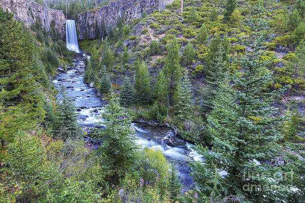 Deschutes River Photograph - Tumalo Falls by Twenty Two North Photography