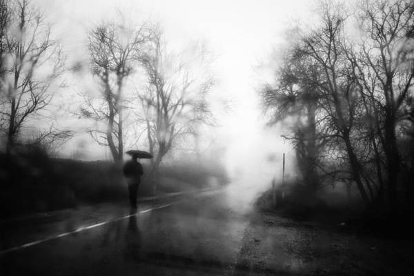 Rainy Photograph - Untitled by Ali Ayer
