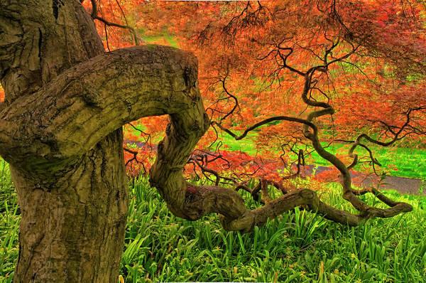 Wilmington Delaware Wall Art - Photograph - Usa, Delaware, Winterthur Gardens by Jaynes Gallery
