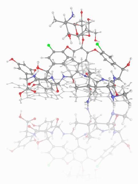 Wall Art - Photograph - Vancomycin Drug Molecule by Laguna Design/science Photo Library