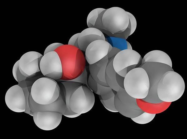 Wall Art - Photograph - Venlafaxine Drug Molecule by Laguna Design/science Photo Library