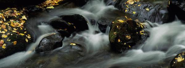 Wall Art - Photograph - Waterfall by Byron Jorjorian