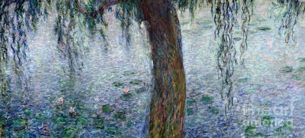 Wall Art - Painting - Waterlilies Morning With Weeping Willows by Claude Monet