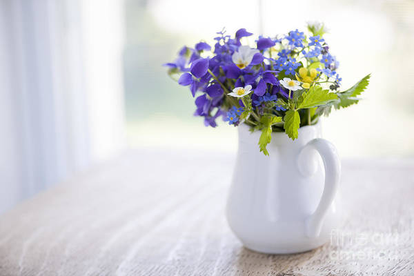 Forget Me Not Photograph - Wildflower Bouquet by Elena Elisseeva