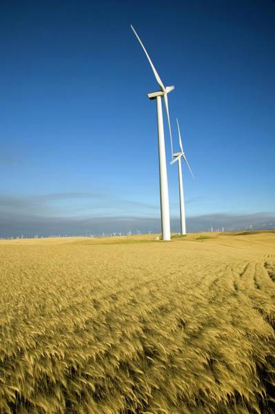 Wall Art - Photograph - Wind Farm by Peter Menzel/science Photo Library