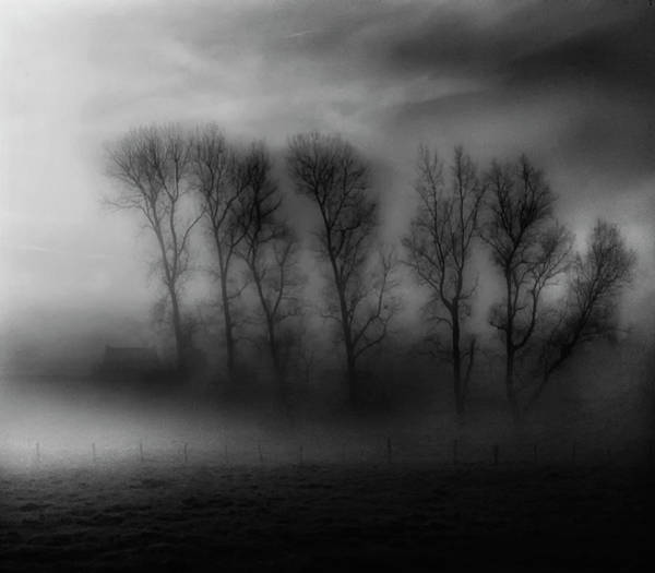 Fog Photograph - 50 Shades Of Fog by Yvette Depaepe