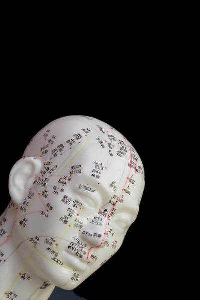Wall Art - Photograph - Human Model Showing Acupuncture Points by Science Stock Photography/science Photo Library