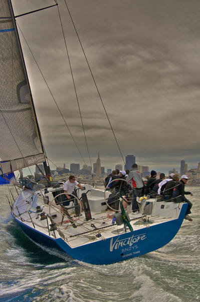 Photograph - San Francisco Regatta by Steven Lapkin