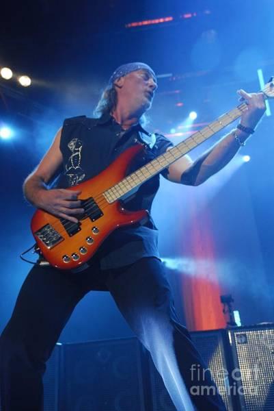 Photograph - Deep Purple by Jenny Potter
