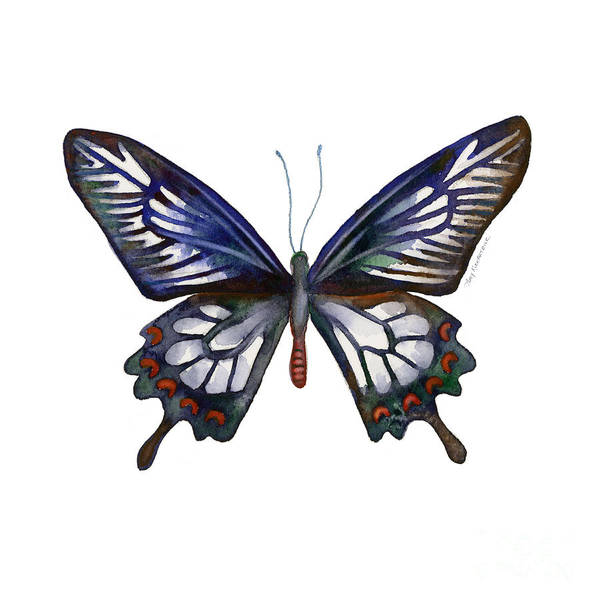 Painting - 54 Ceylon Rose Butterfly by Amy Kirkpatrick