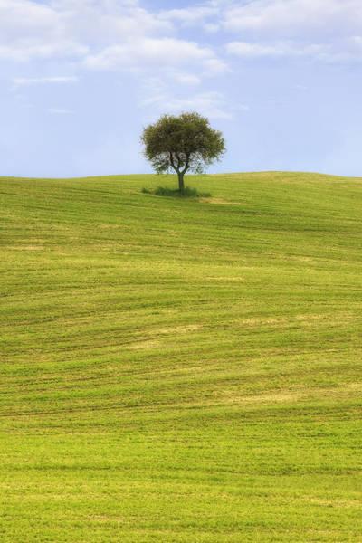 Siena Italy Photograph - Tuscany by Joana Kruse