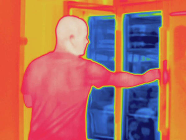 Wall Art - Photograph - Thermogram by Science Stock Photography/science Photo Library